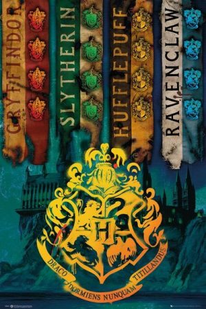 Harry Potter Poster Set House Flags 61 x 91 cm (5)