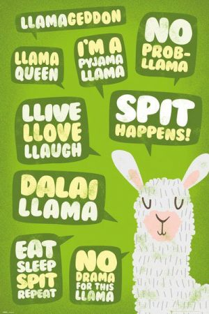 Lama Poster Set Quotes 61 x 91 cm (5)