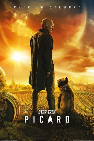 Star Trek: Picard Poster Set Picard Number One 61 x 91 cm (5)